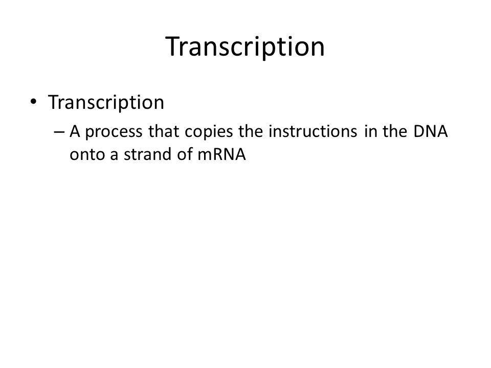 Transcription Transcription