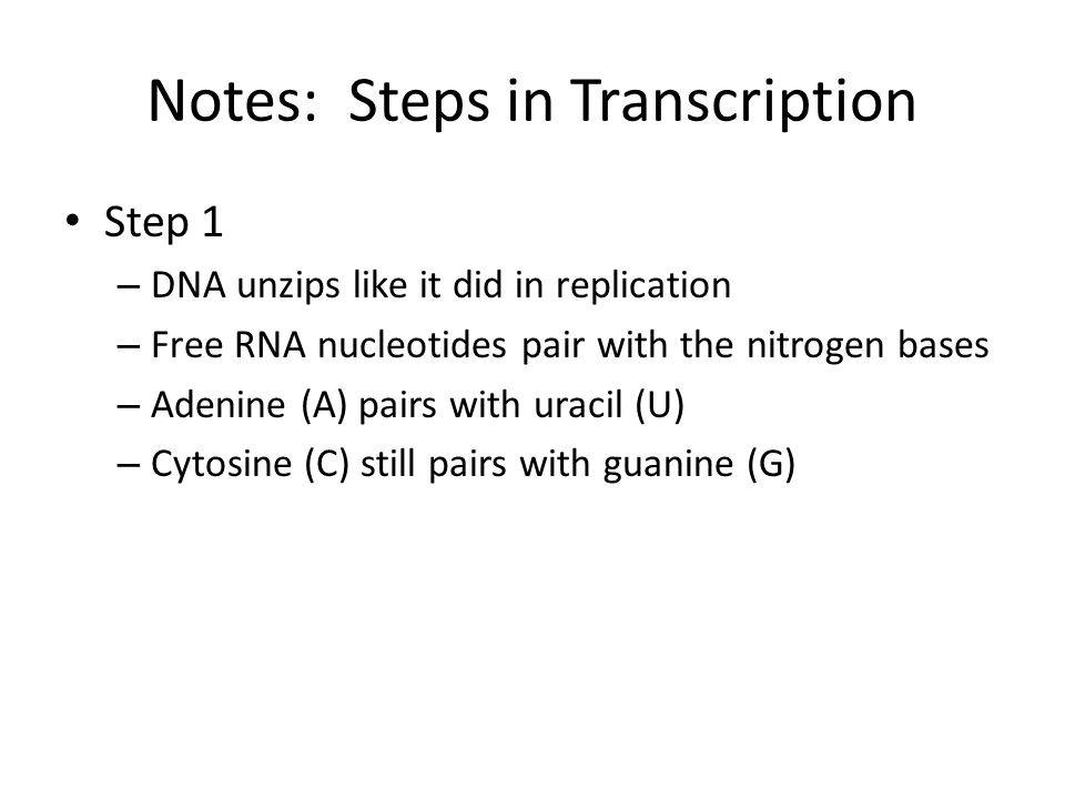 Notes: Steps in Transcription