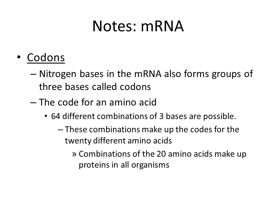Notes: mRNA Codons. Nitrogen bases in the mRNA also forms groups of three bases called codons. The code for an amino acid.
