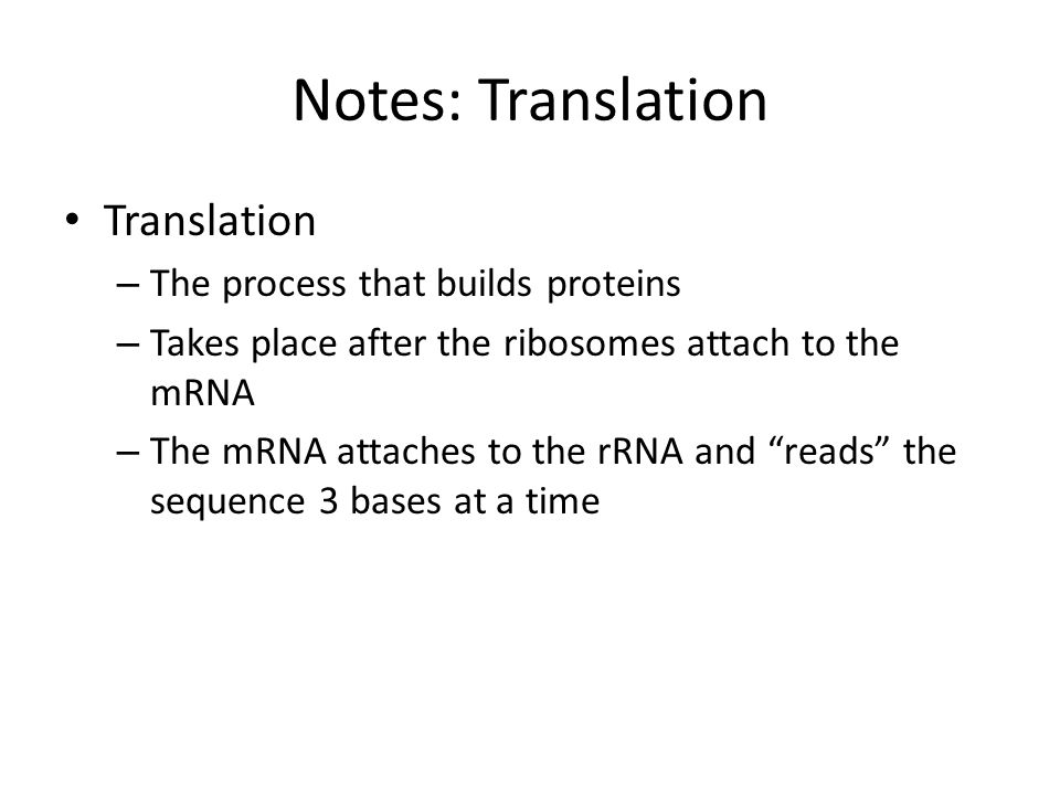 Notes: Translation Translation The process that builds proteins
