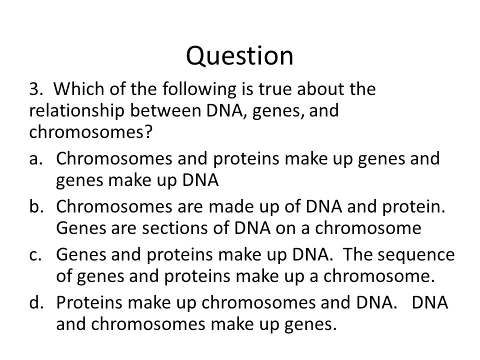 Question 3. Which of the following is true about the relationship between DNA, genes, and chromosomes