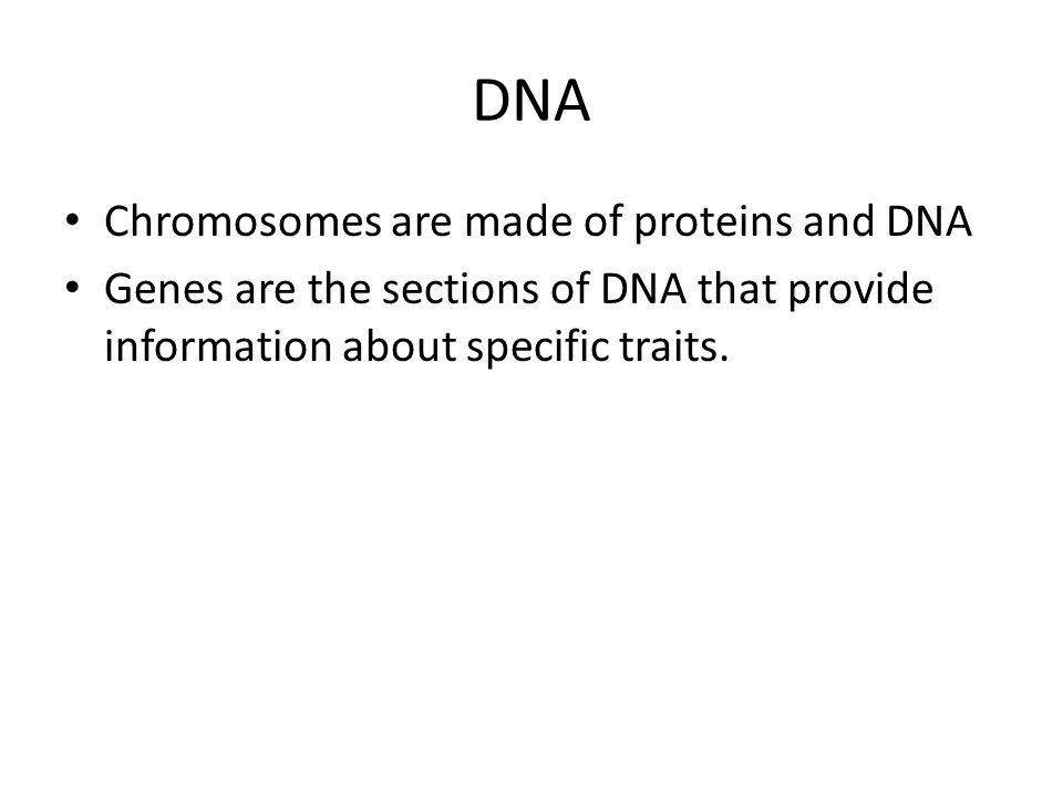 DNA Chromosomes are made of proteins and DNA