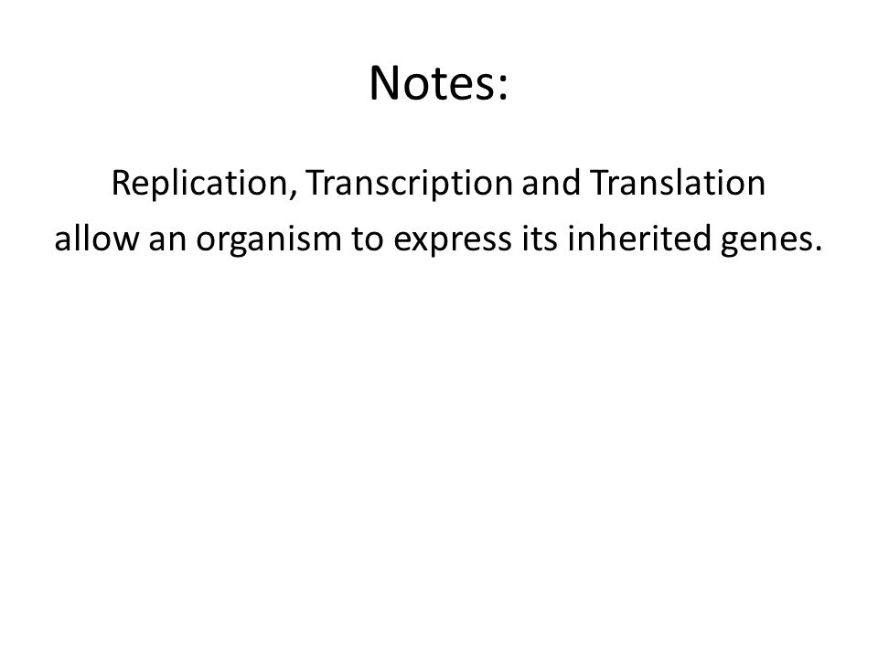 Notes: Replication, Transcription and Translation allow an organism to express its inherited genes.