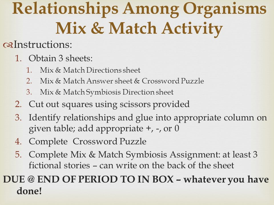 Unit 4 Ecology Vocab Remember To Do A Menu Option Ppt. Worksheet. Symbiosis Worksheet Key At Clickcart.co