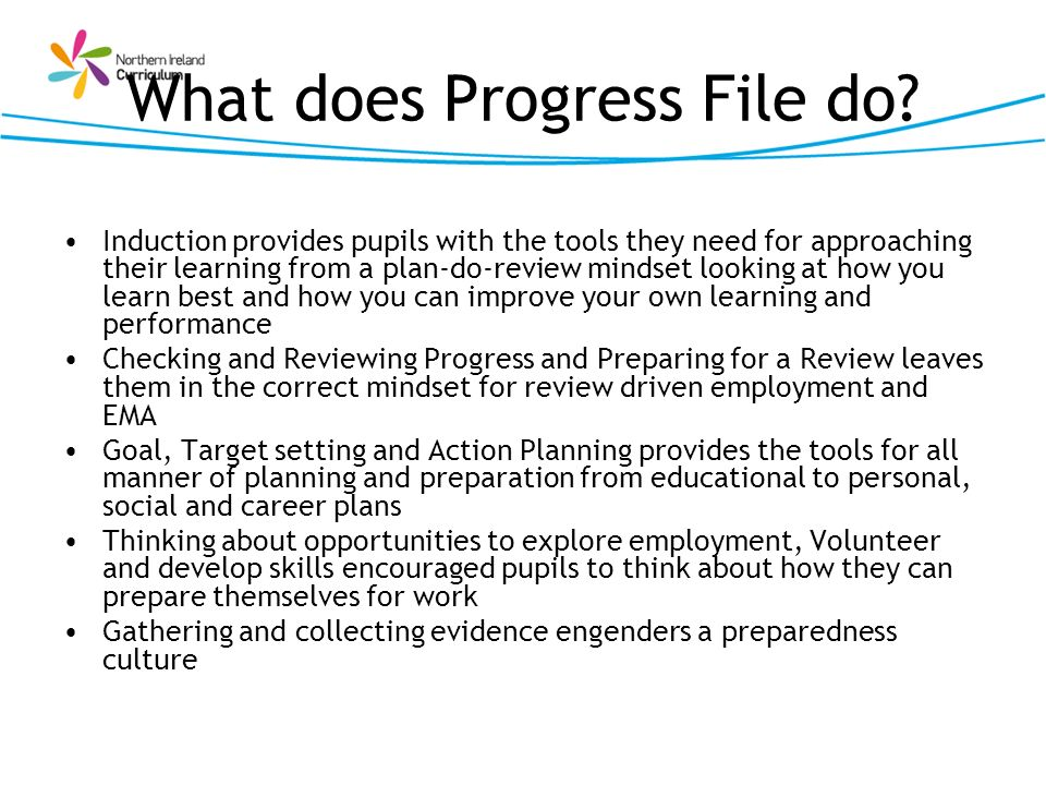 What does Progress File do