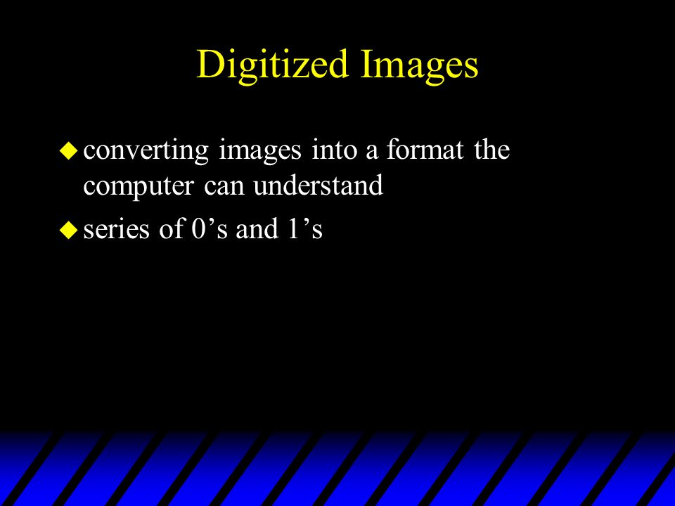 Digitized Images converting images into a format the computer can understand series of 0's and 1's