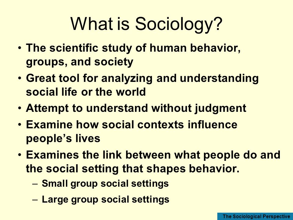 What is Sociology The scientific study of human behavior, groups, and society. Great tool for analyzing and understanding social life or the world.