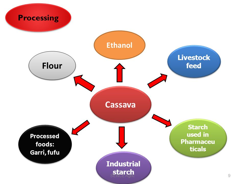 INVESTMENT POTENTIAL IN CASSAVA VALUE CHAIN - ppt video