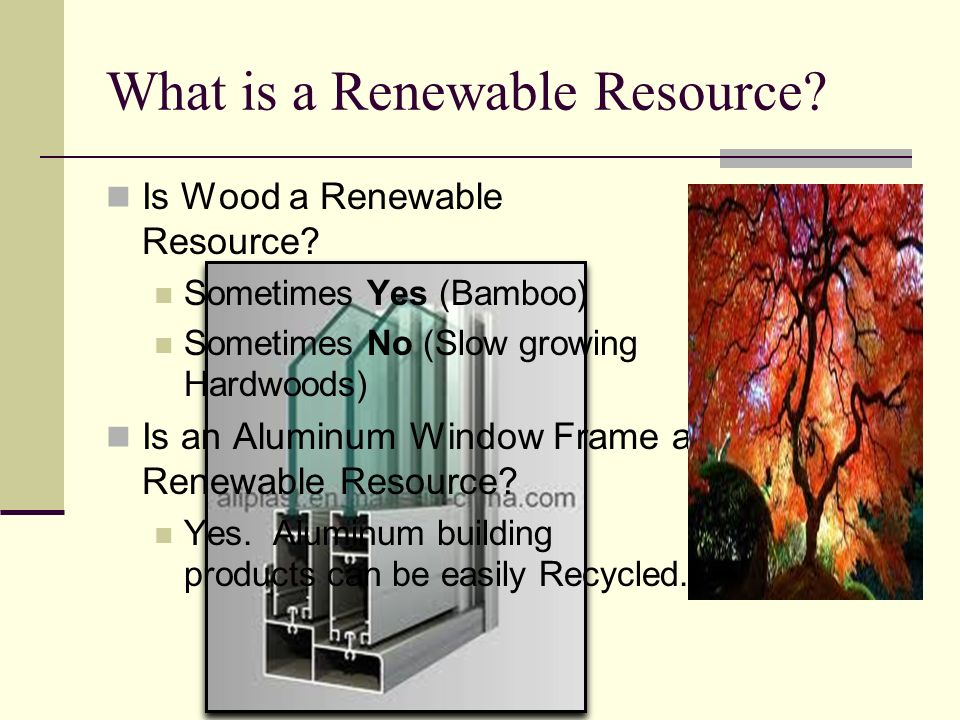 What is a Renewable Resource
