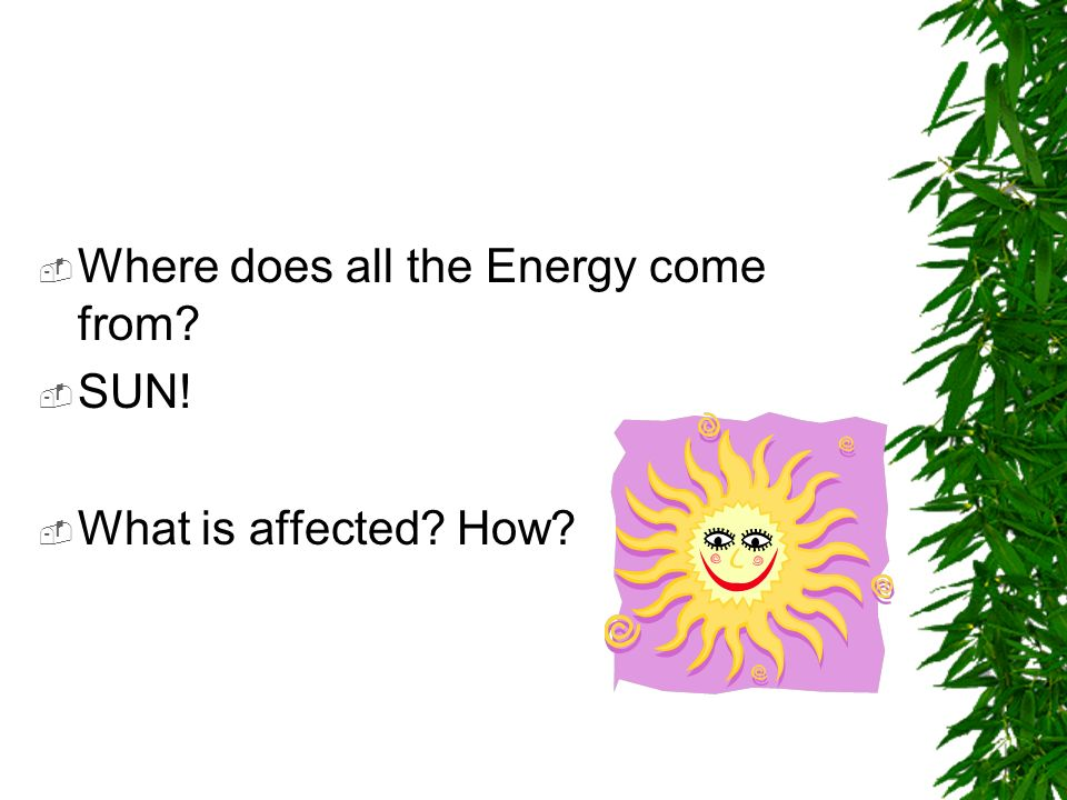 Where does all the Energy come from