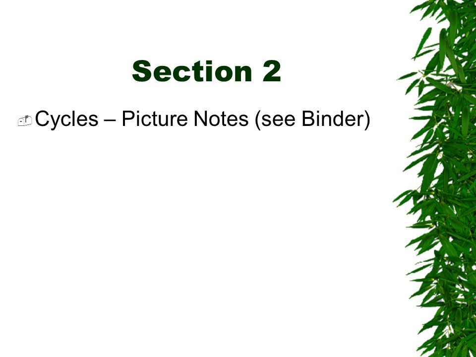 Section 2 Cycles – Picture Notes (see Binder)