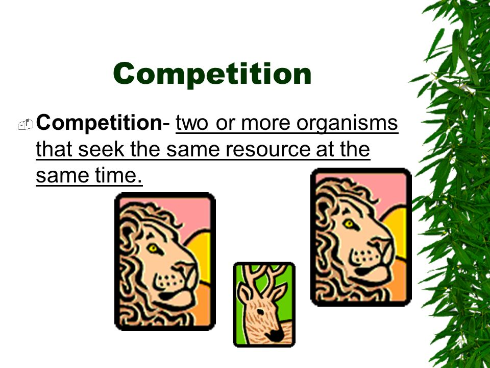Competition Competition- two or more organisms that seek the same resource at the same time.