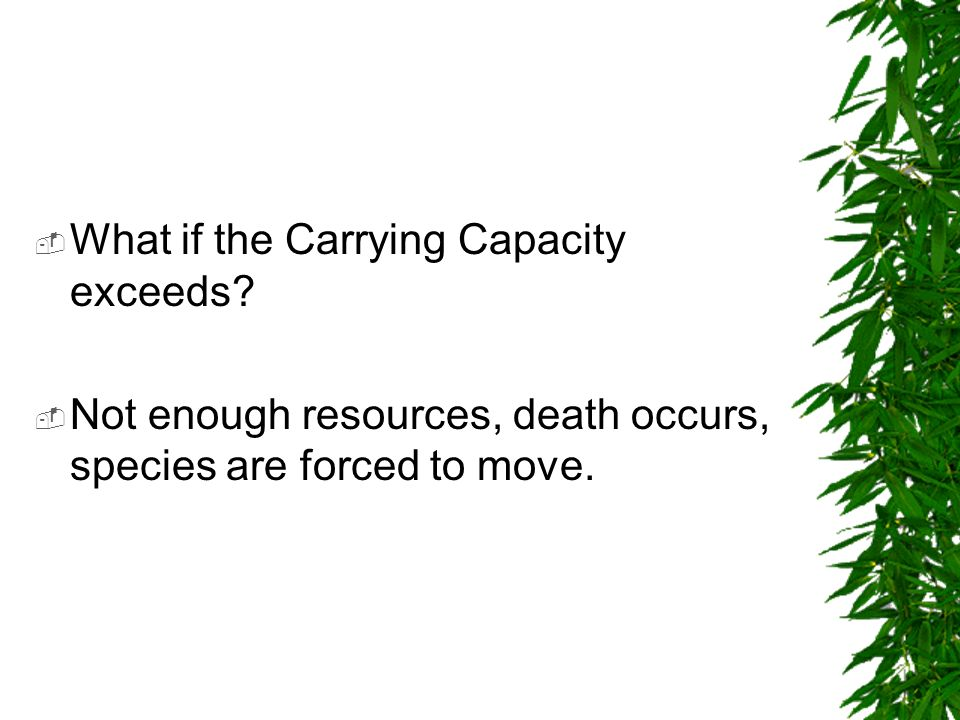 What if the Carrying Capacity exceeds