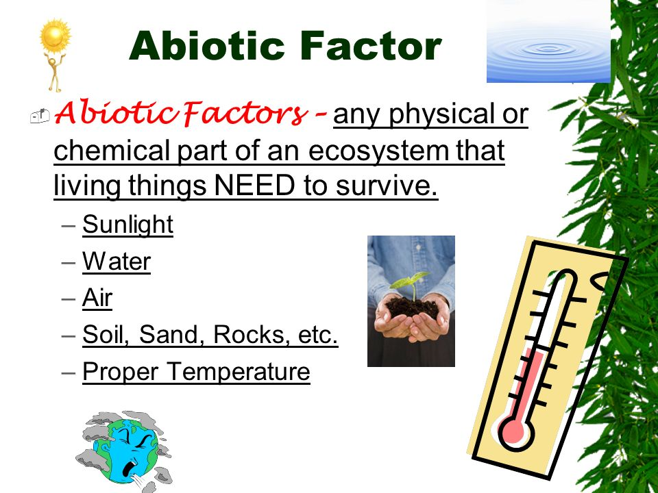 Abiotic Factor Abiotic Factors – any physical or chemical part of an ecosystem that living things NEED to survive.