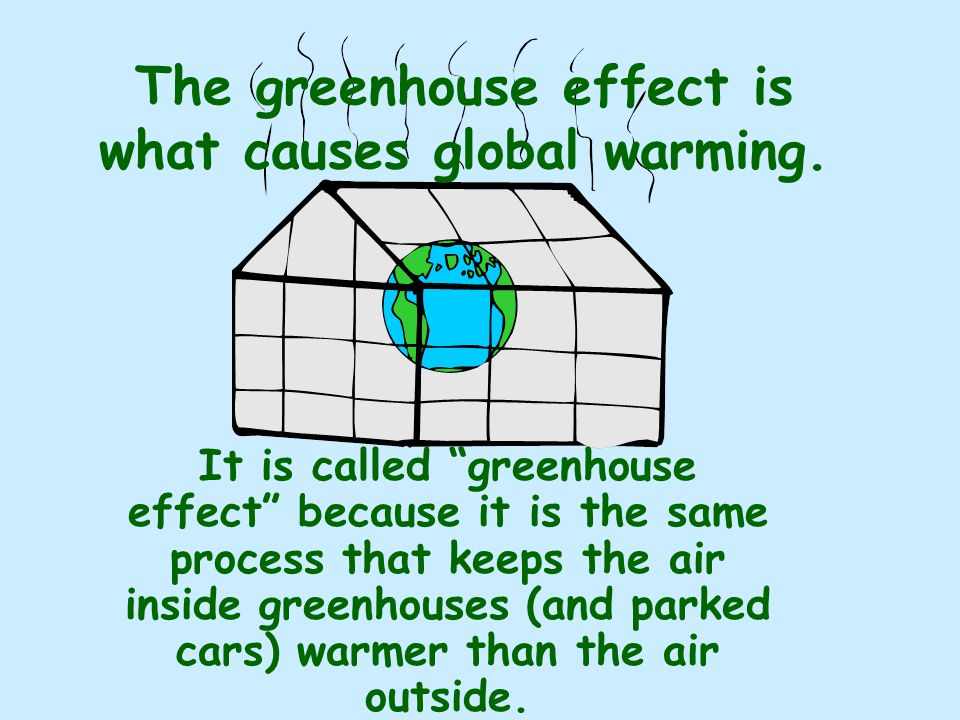 The greenhouse effect is what causes global warming.