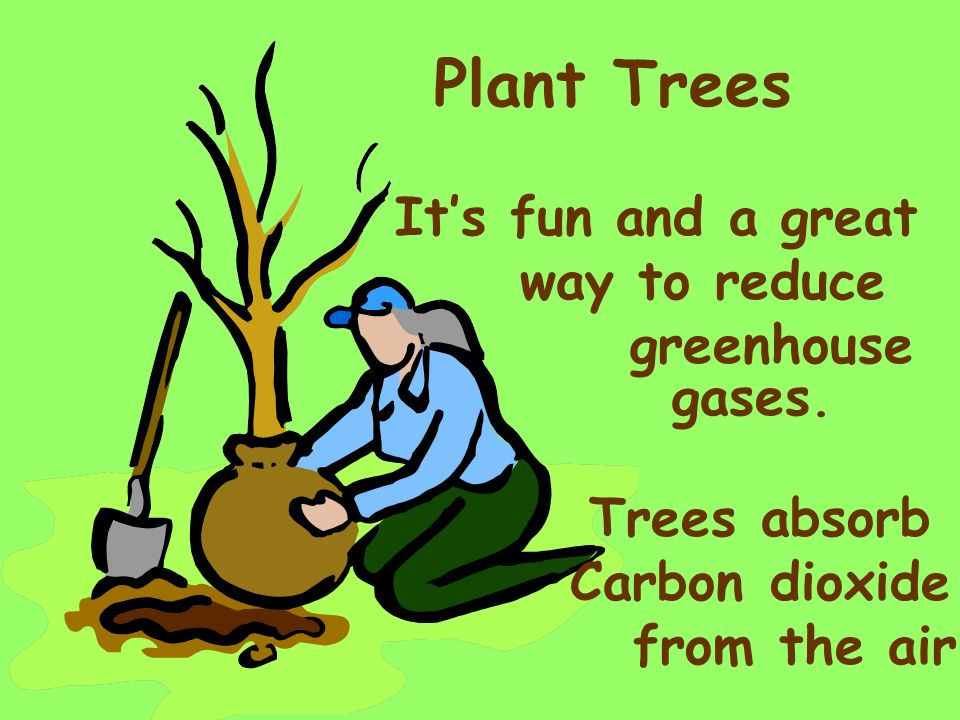 Plant Trees It's fun and a great way to reduce greenhouse gases.