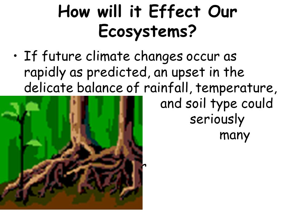 How will it Effect Our Ecosystems