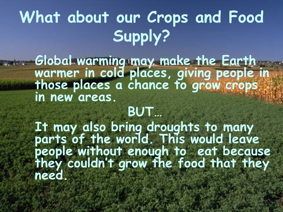What about our Crops and Food Supply