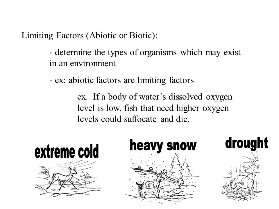 drought heavy snow extreme cold Limiting Factors (Abiotic or Biotic):