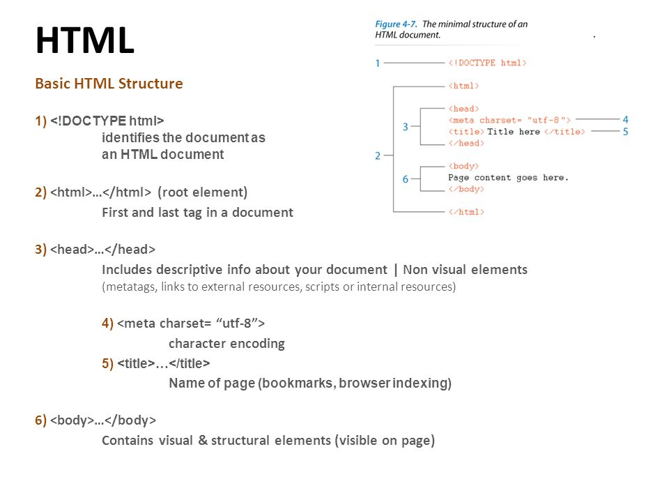 HTML – Introduction to the Code - ppt video online download
