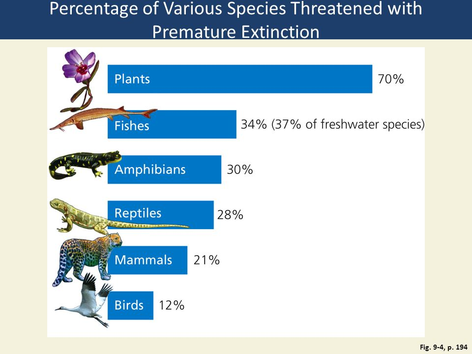 Chapter 9 sustaining biodiversity the species approach ppt video percentage of various species threatened with premature extinction altavistaventures Gallery