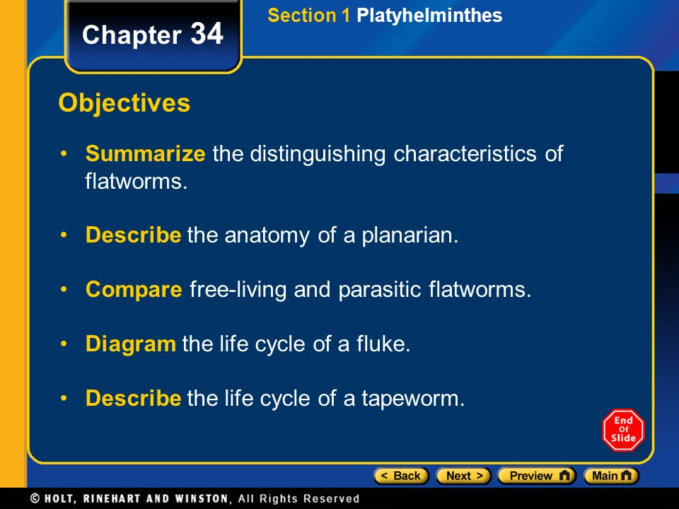 Chapter 34 Table Of Contents Section 1 Platyhelminthes Ppt Video