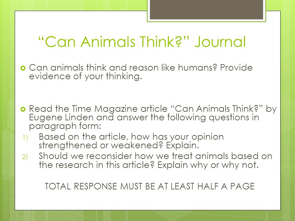 Can Animals Think Journal