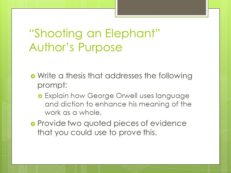 Shooting an Elephant Author's Purpose