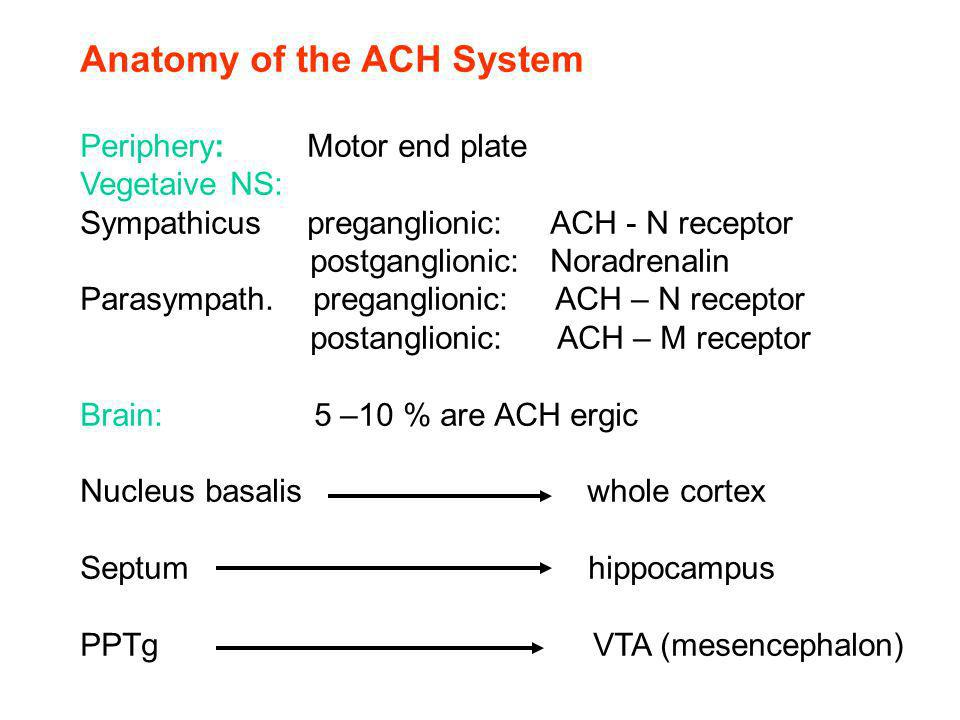 Anatomy of the ACH System