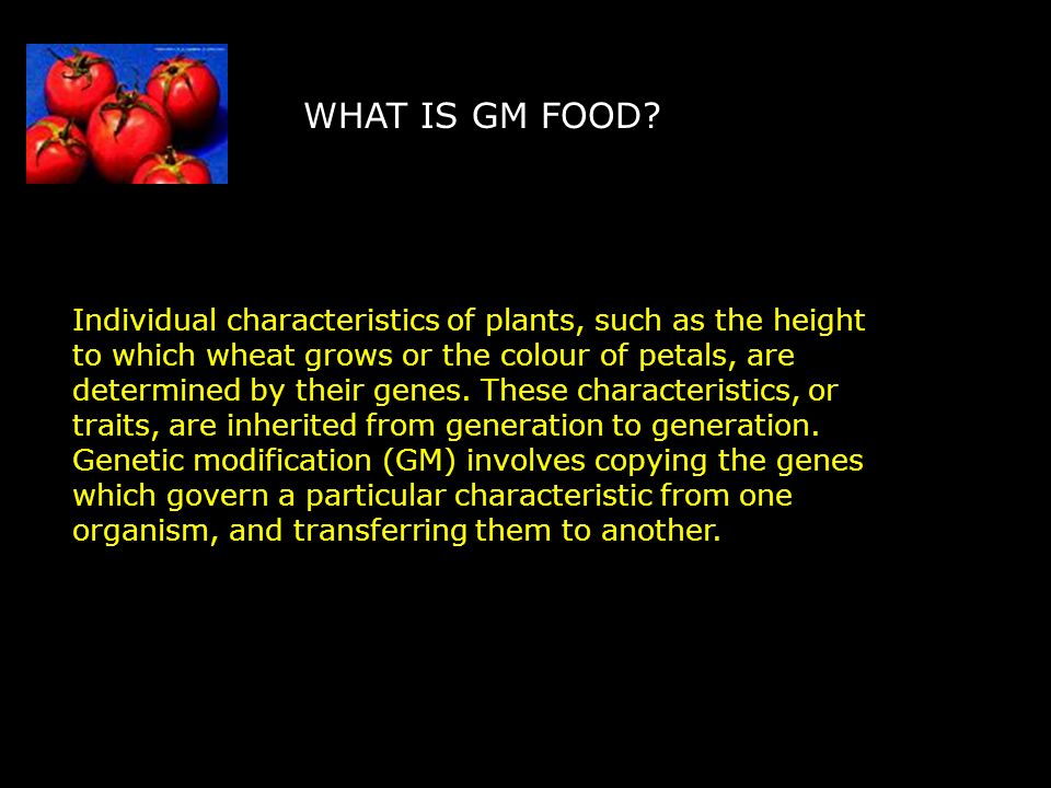 WHAT IS GM FOOD