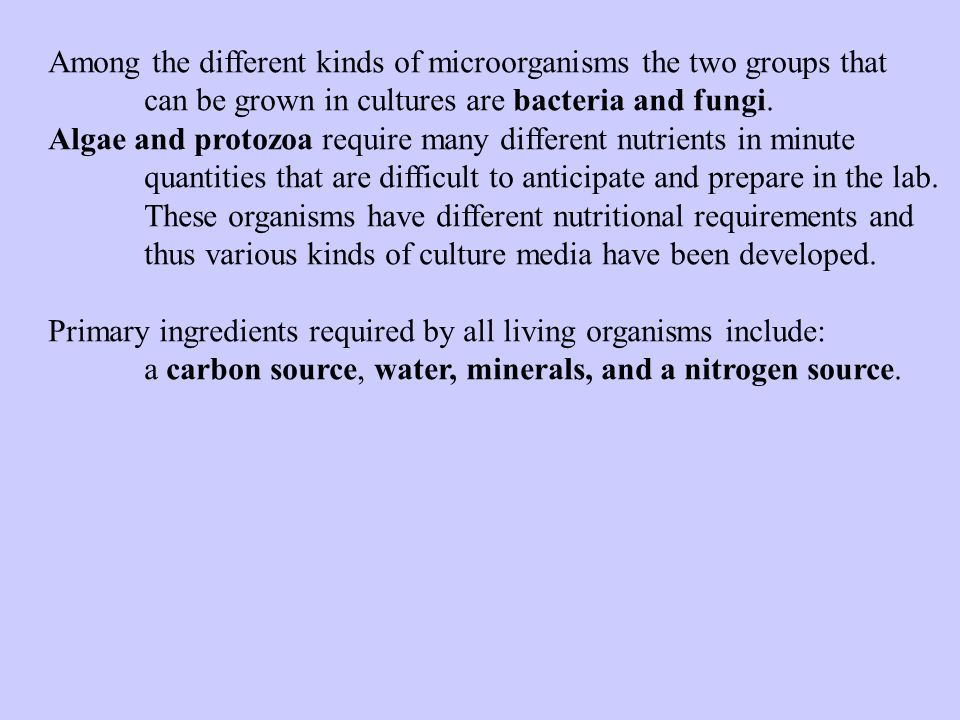 Among the different kinds of microorganisms the two groups that