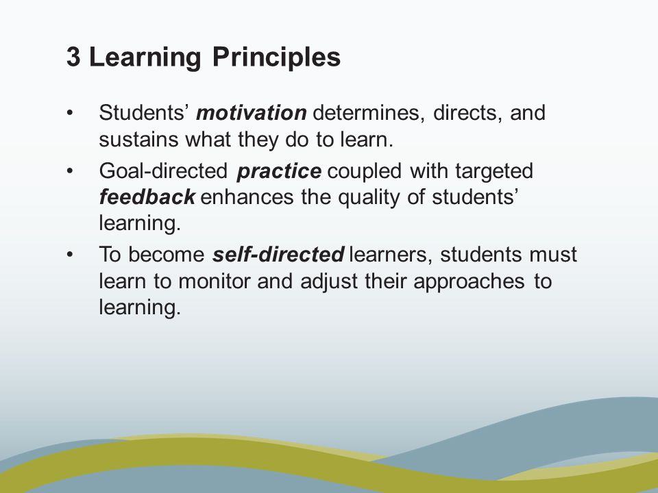 3 learning principles students motivation determines directs and sustains what they do to