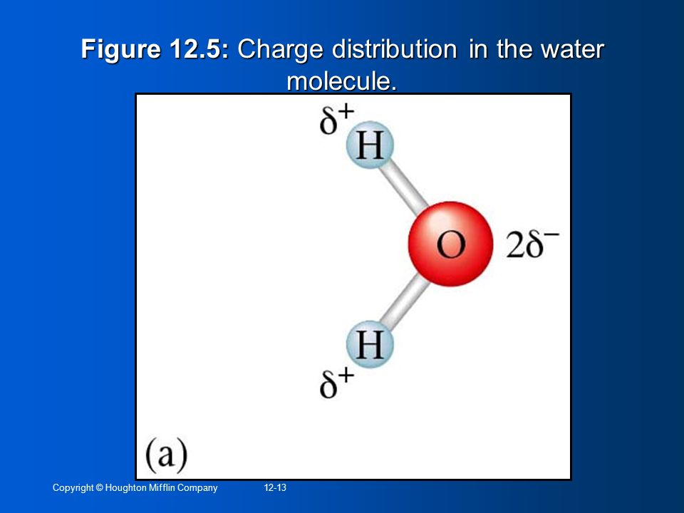 Figure 12.5: Charge distribution in the water molecule.