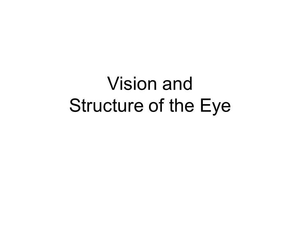 Vision and Structure of the Eye