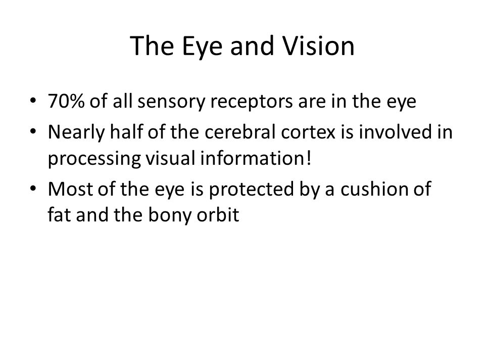Chapter 15 Special Senses. - ppt download