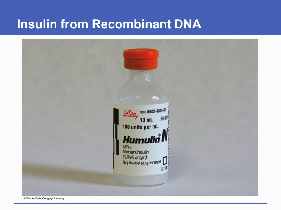 Insulin from Recombinant DNA