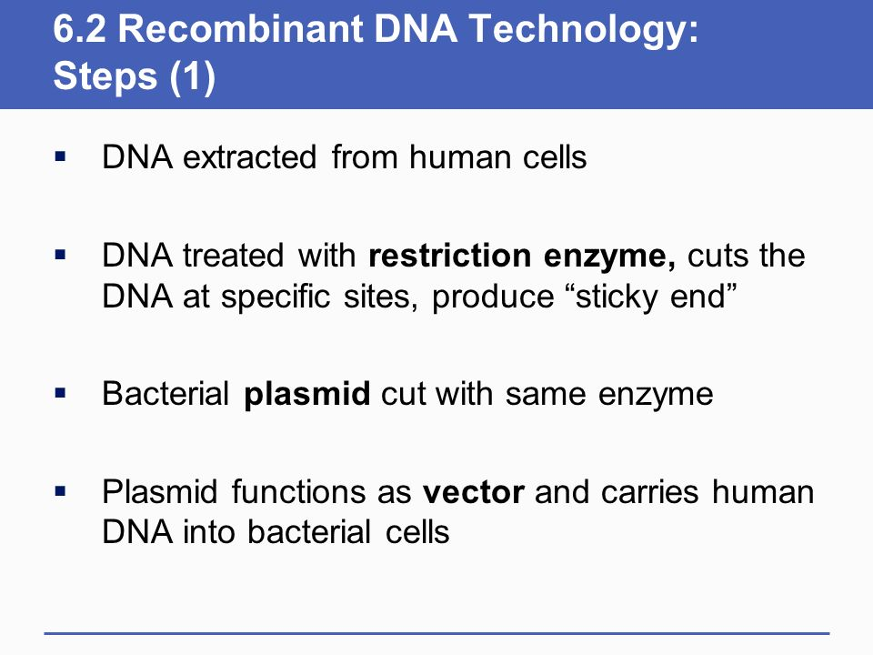 6.2 Recombinant DNA Technology: Steps (1)