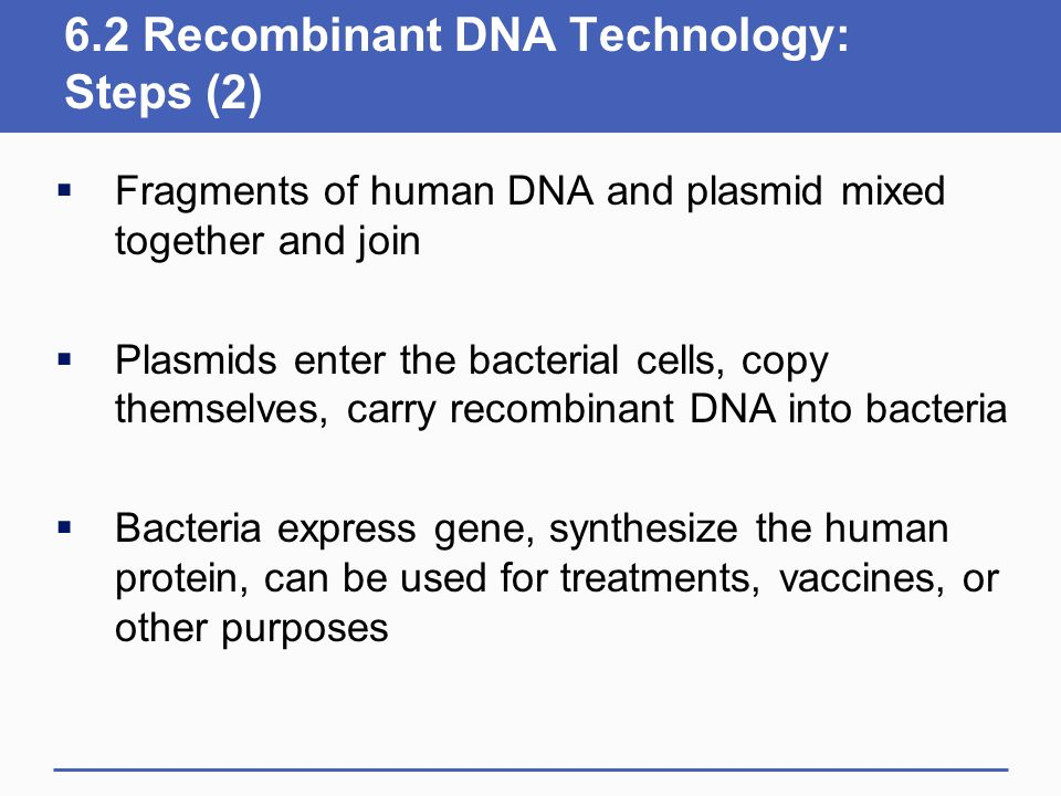 6.2 Recombinant DNA Technology: Steps (2)