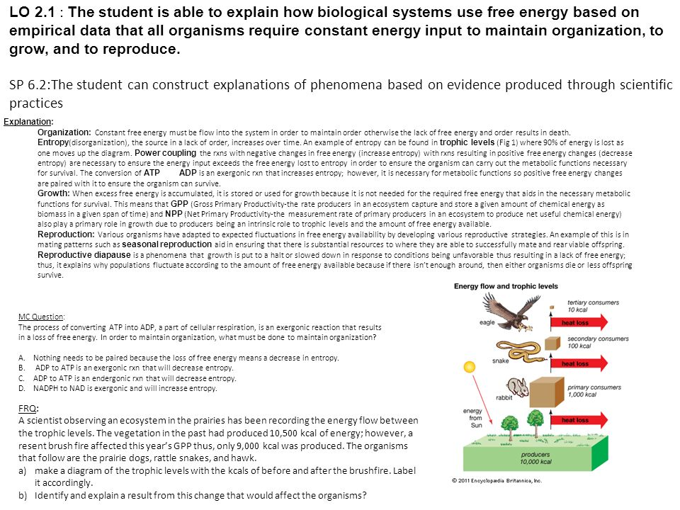 LO 2.1 : The student is able to explain how biological systems use free energy based on empirical data that all organisms require constant energy input to maintain organization, to grow, and to reproduce.