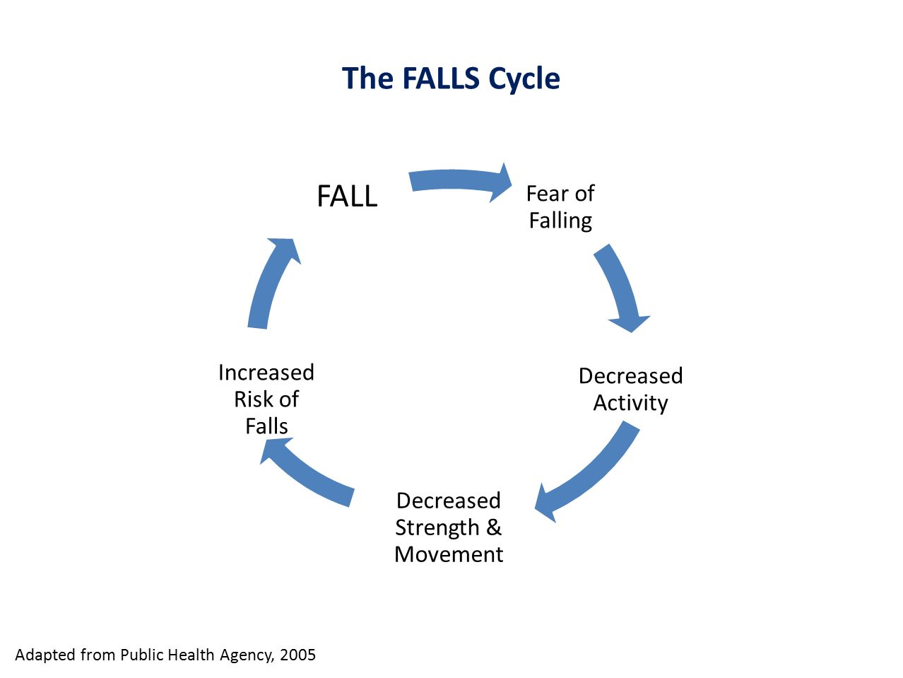 The FALLS Cycle FALL Fear of Falling Increased Risk of Falls