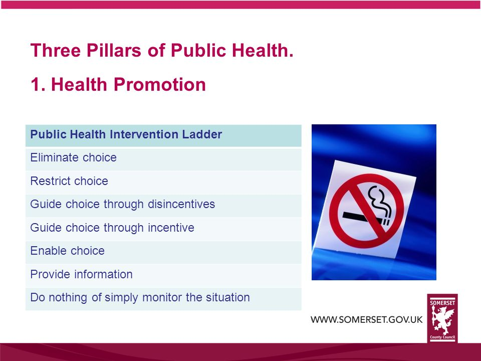 Three Pillars of Public Health. 1. Health Promotion