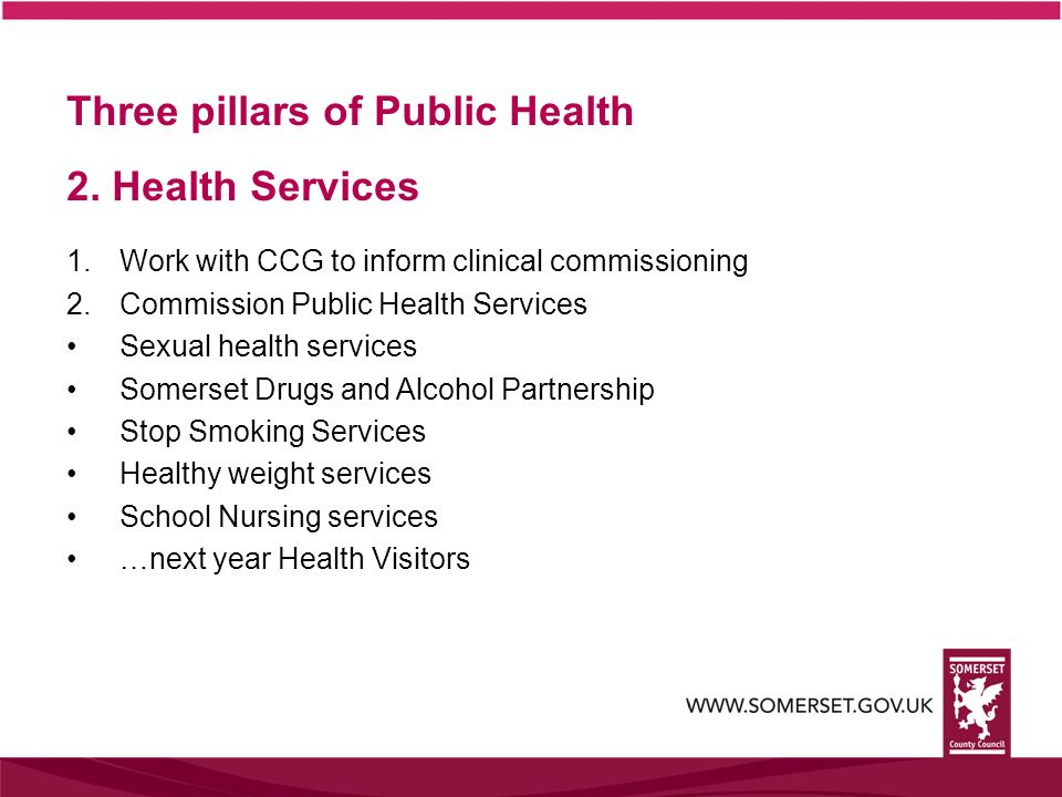 Three pillars of Public Health 2. Health Services