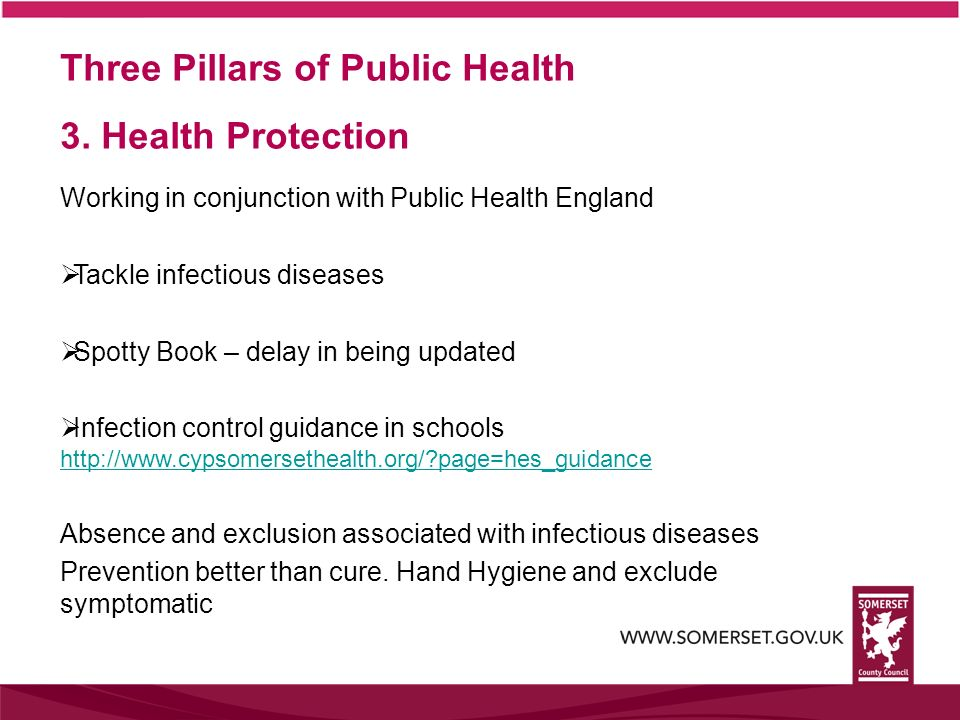 Three Pillars of Public Health 3. Health Protection