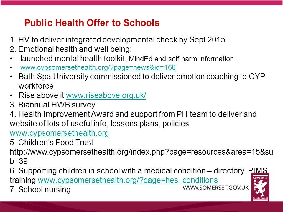 Public Health Offer to Schools