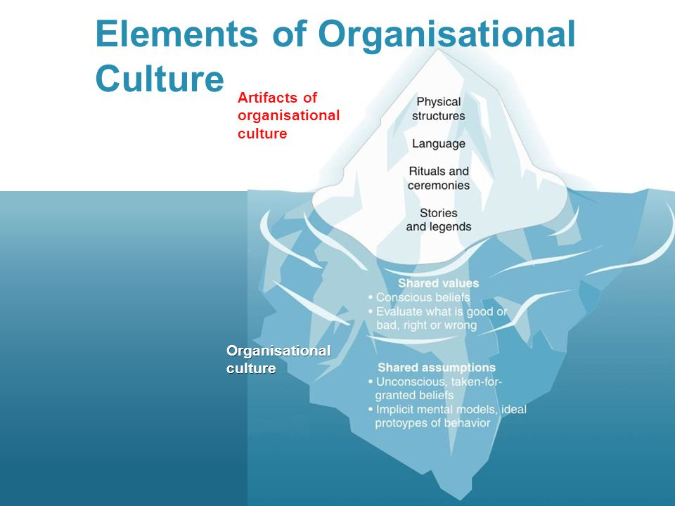 Elements Of Organisational Culture