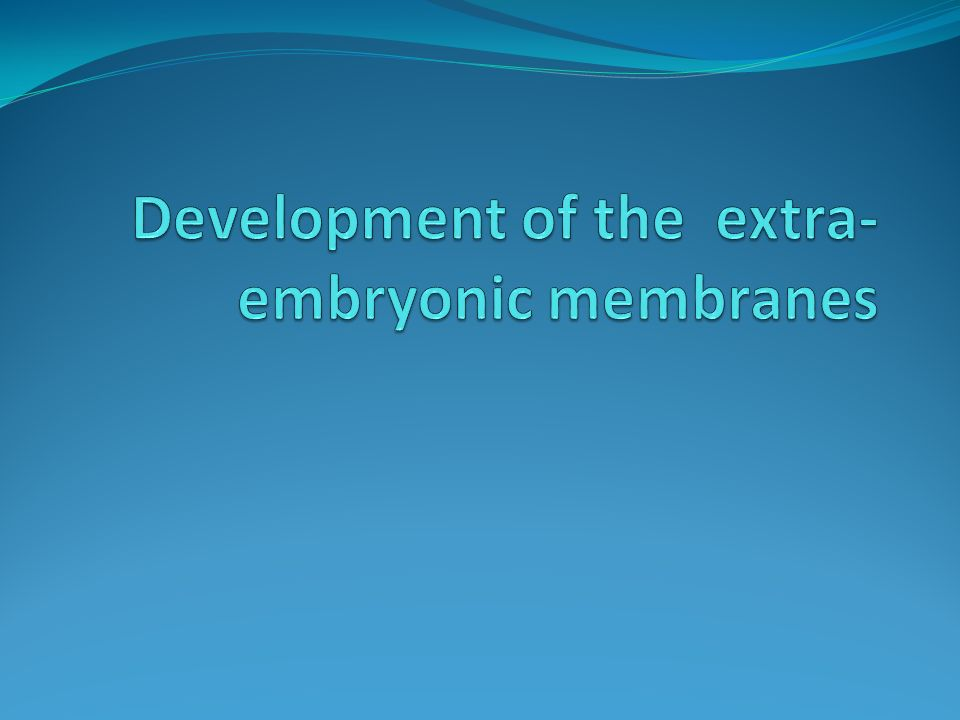 Development of the extra-embryonic membranes