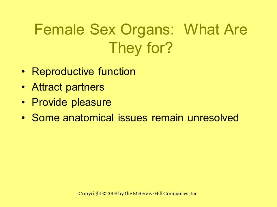 Chapter Three Female Sexual Anatomy. - ppt video online download