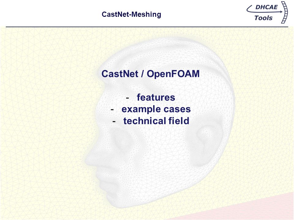 CastNet / OpenFOAM features example cases technical field