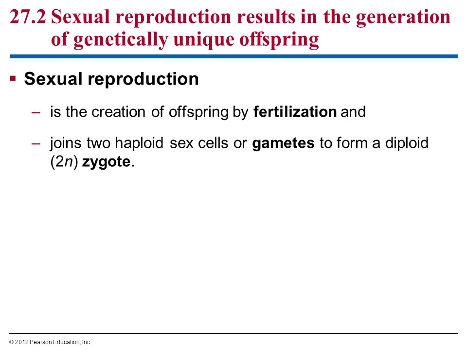 Sexual reproduction advantages over asexual marriage