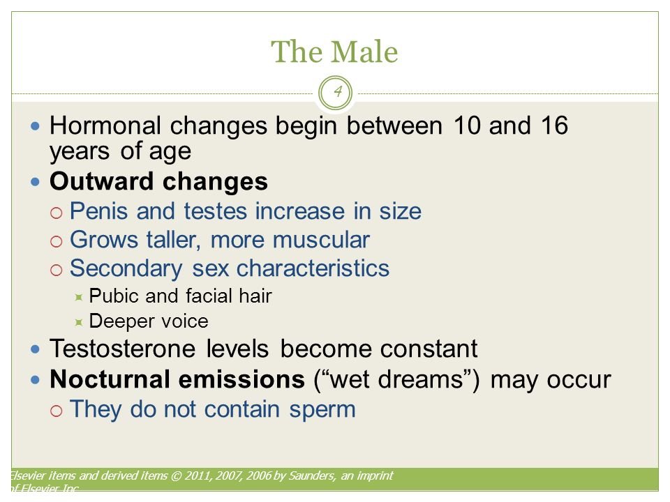 nocturnal emissions and testosterone levels